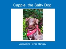 Cappie, the Salty Dog