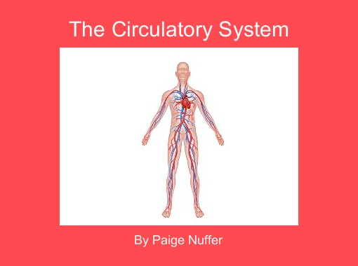 The circulatory system free books children 39 s stories for Home circulation system