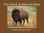 The Life of an American Bison