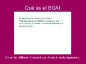 Qué es el BGAI