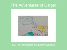The Adventures of Ginger