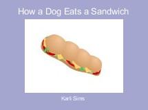How a Dog Eats a Sandwich