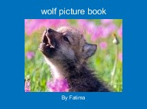 wolf picture book
