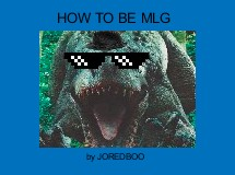 HOW TO BE MLG