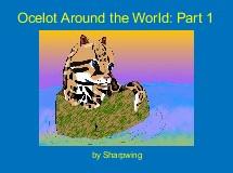 Ocelot Around the World: Part 1