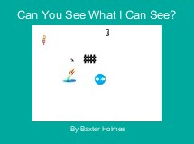 Can You See What I Can See?
