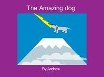 The Amazing dog