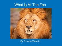 What is At The Zoo