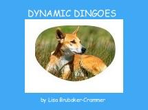 DYNAMIC DINGOES