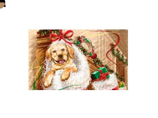 a christmas puppy free books children s stories online