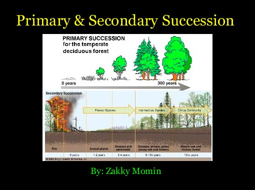 Primary Secondary Succession Free Books Childrens Stories