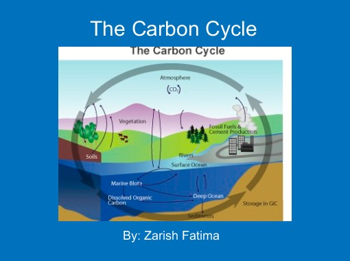 The carbon cycle free books childrens stories online the carbon cycle free books childrens stories online storyjumper ccuart Choice Image