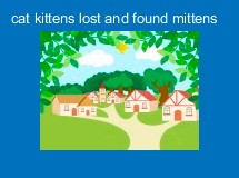 cat kittens lost and found mittens