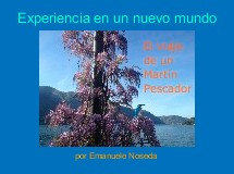 Experiencia en un nuevo mundo