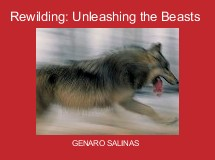Rewilding: Unleashing the Beasts