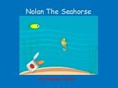Nolan The Seahorse