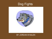 Dog Fights