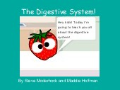 The Digestive System!