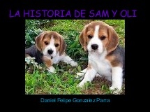 LA HISTORIA DE SAM Y OLI