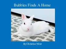 Bubbles Finds A Home