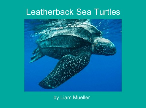Quot Leatherback Sea Turtles Quot Free Books Amp Children S