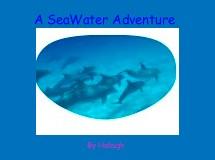 A SeaWater Adventure
