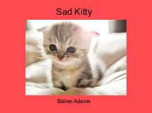 Sad Kitty