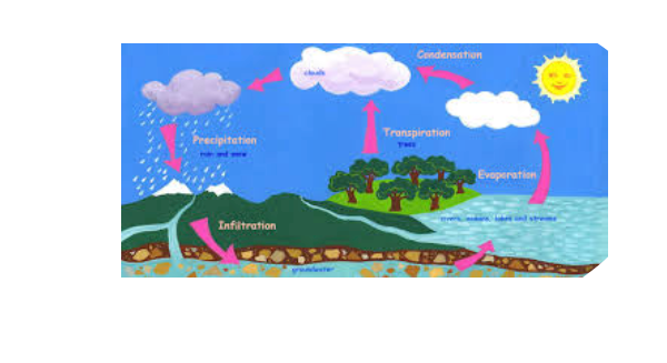 The water cycle free books childrens stories online storyjumper the water cycle ccuart Gallery