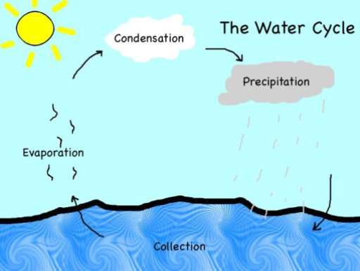 The Water Cycle on Water Vapor Science Worksheets For Grade 5