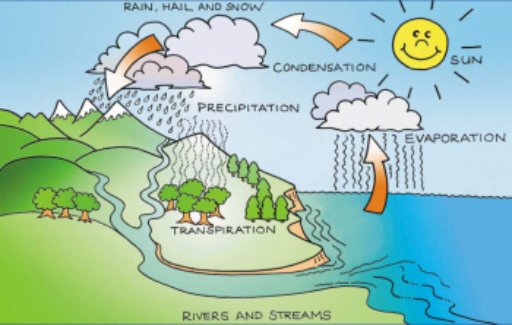 The water cycle free books childrens stories online storyjumper the water cycle by robin gutierrez ccuart Gallery