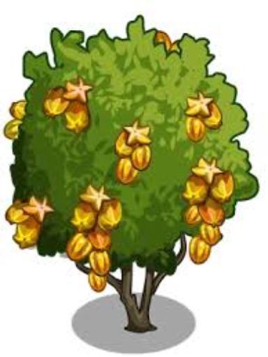 """""""The golden star fruit tree"""" - Free Books & Children's ..."""